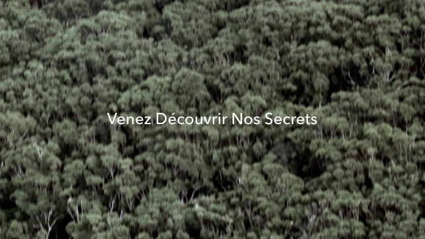 Ckoasa Secrets